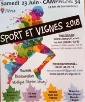 Résultats Sport et Vignes 2018